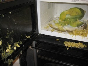 Blooper for the night: Exploded Spaghetti Squash